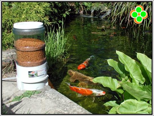 Alimentador autom tico para peces for Comida para peces de estanque